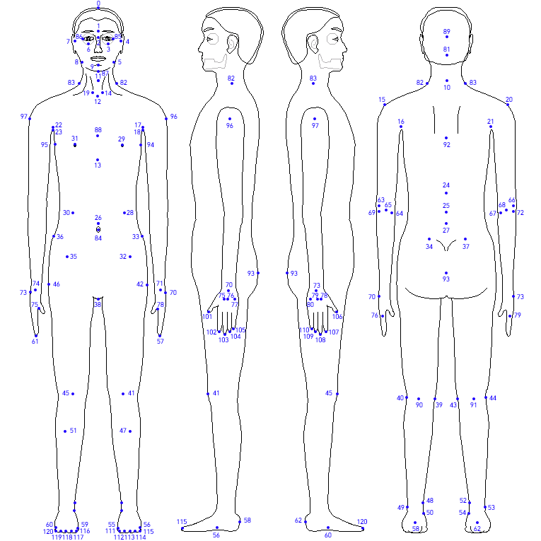 Awesome Blank Human Body Diagram Pictures - Anatomy And Physiology ...